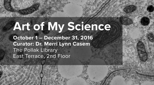 Promo graphic for Art of My Science exhibit